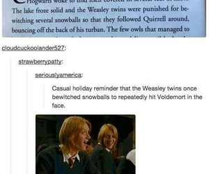 harry potter, tumblr, and weasly twins image
