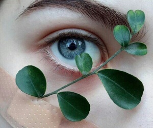 eye, plants, and nature image