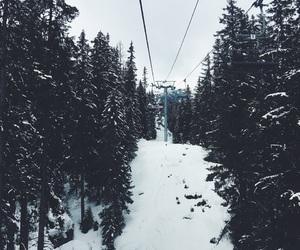 ski, snow, and trees image
