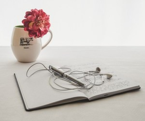 flower, music, and Paper image