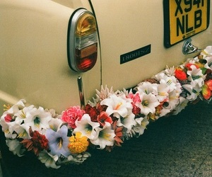 car, drive, and flower image