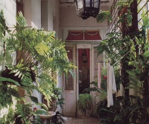 beautiful, casa, and green image