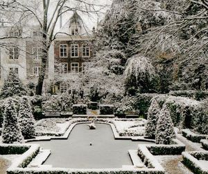garden, london, and winter image