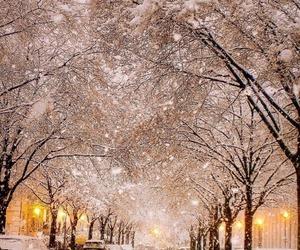 december, snow, and nice image