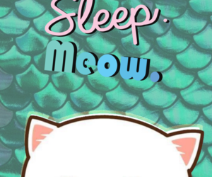 background, cats, and cat image