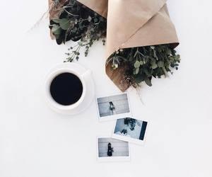 coffee, photo, and flowers image