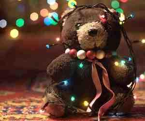 bear, winter, and light image