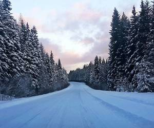 christmas, road, and snow image