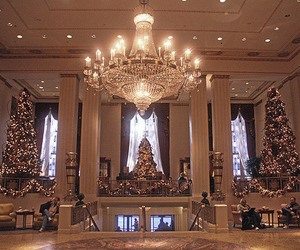 christmas, luxury, and chandelier image