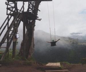 adventure, fun, and tree image