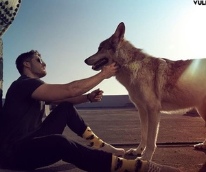 cody christian, wolf, and teen wolf image