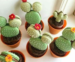 food, cactus, and macaroons image