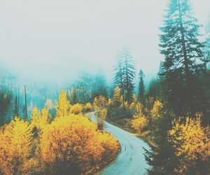 autumn, fall, and tumblr image