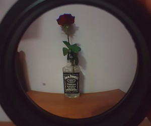 flower, jackdaniels, and rose image