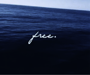 free, sea, and blue image