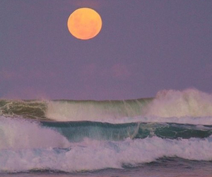 beach, moon, and purple image