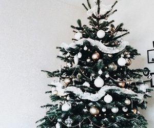 christmas, tree, and winter image