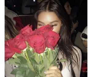 rose, beauty, and flowers image
