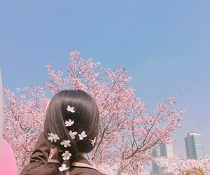 girl, pink, and flowers image