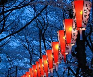 lights, street lights, and asian street lights image