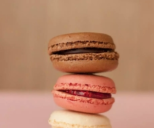 ‎macarons, chocolate, and pink image