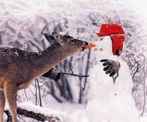 snowman, winter, and deer image