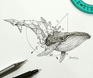 animals, ink, and sketch pens image
