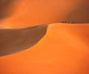 desert, landscape, and dunes image