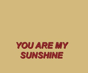 quote, sunshine, and wallpaper image