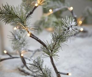 christmas, snow, and evergreen image