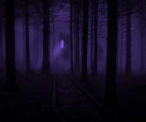 purple, dark, and forest image