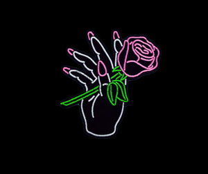 rose, hand, and neon image
