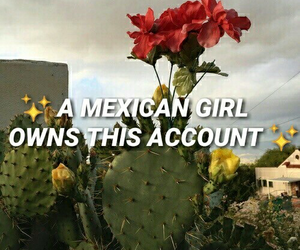 mexico and mexican image