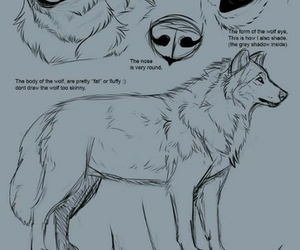dibujo, drew, and lobo image