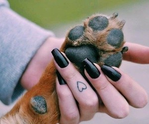 dog, tattoo, and nails image