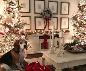 animal, chic, and christmas image