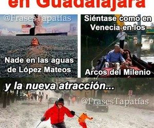gdl and memes image