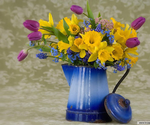 blue, daffodil, and flowers image