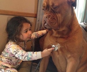 dog, doctor, and baby image