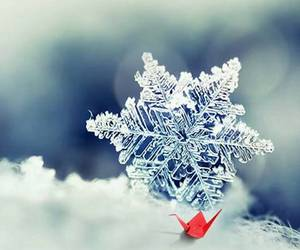 ice, snow, and snowflake image