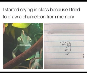 drawing, chameleon, and school image