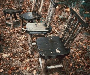 autumn, chairs, and forest image