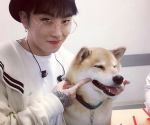 taeil, dog, and block b image