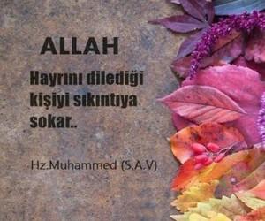 hz muhammed, alıntı, and türkçe sözler image