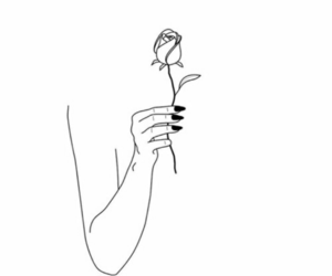 rose, flowers, and art image