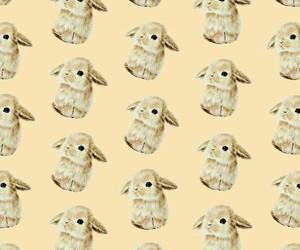 bunny, pattern, and conejito image