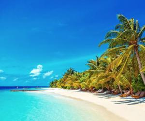 Caribbean, Maldives, and ocean image