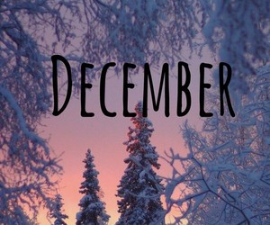 background, christmas, and december image