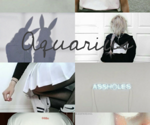 aquario, aquarius, and sign image