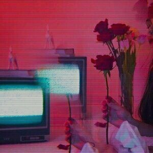tv, aesthetic, and flowers image
